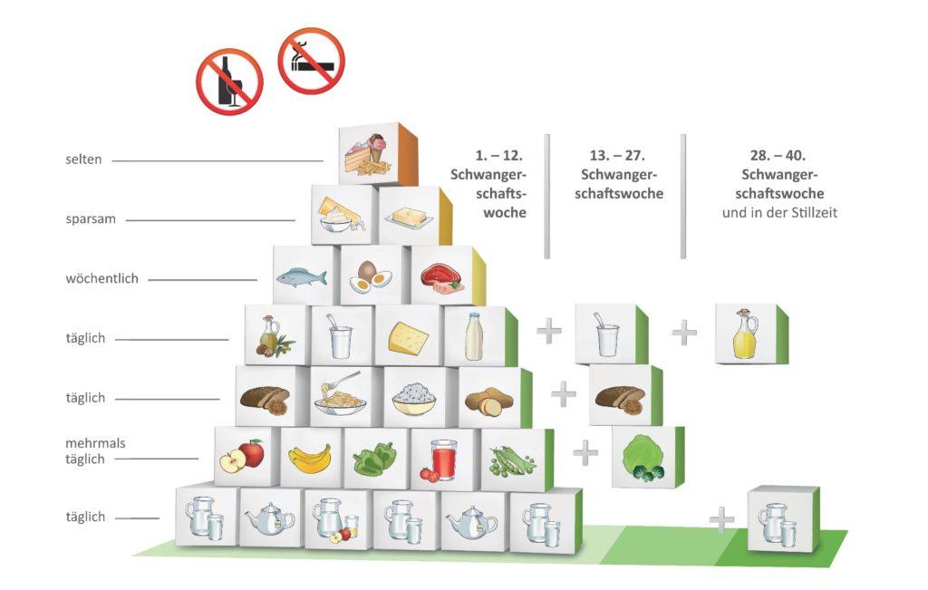 REVAN • Ernährungspyramide • Schwangerschaft